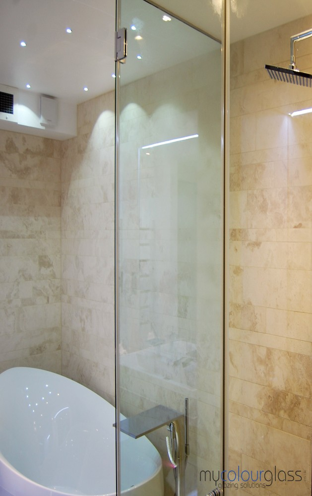 Glass shower screen with hinges